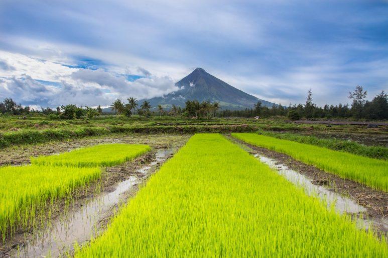 Mont Mayon