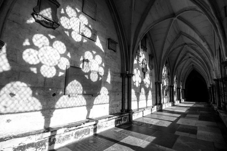 Cloister shadows