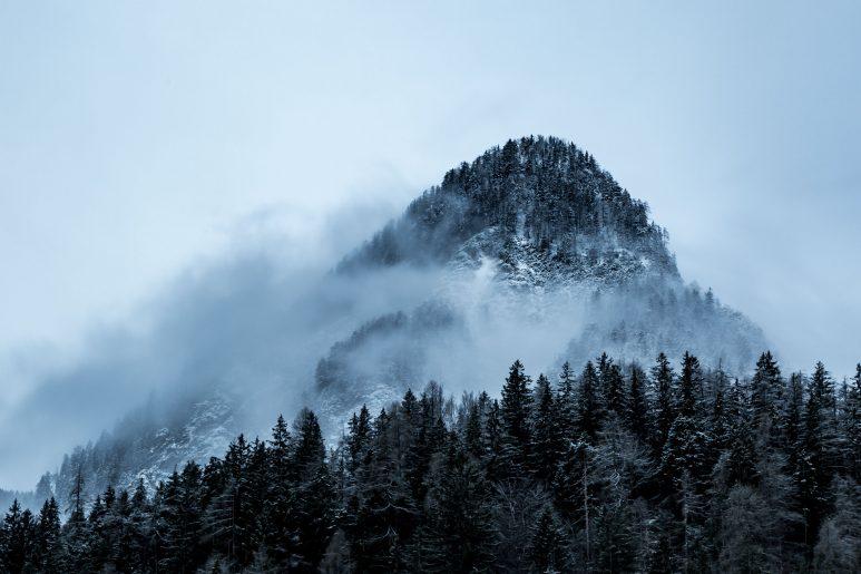 Foggy mount