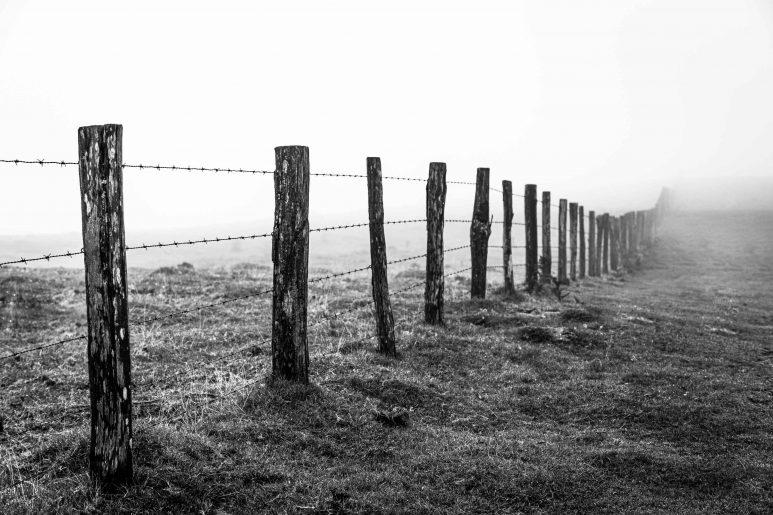 Follow the fence